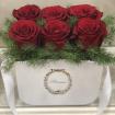 جعبه گل آنتیگونه 2