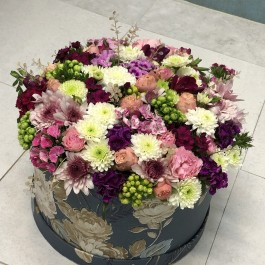 جعبه گل آمیتیس